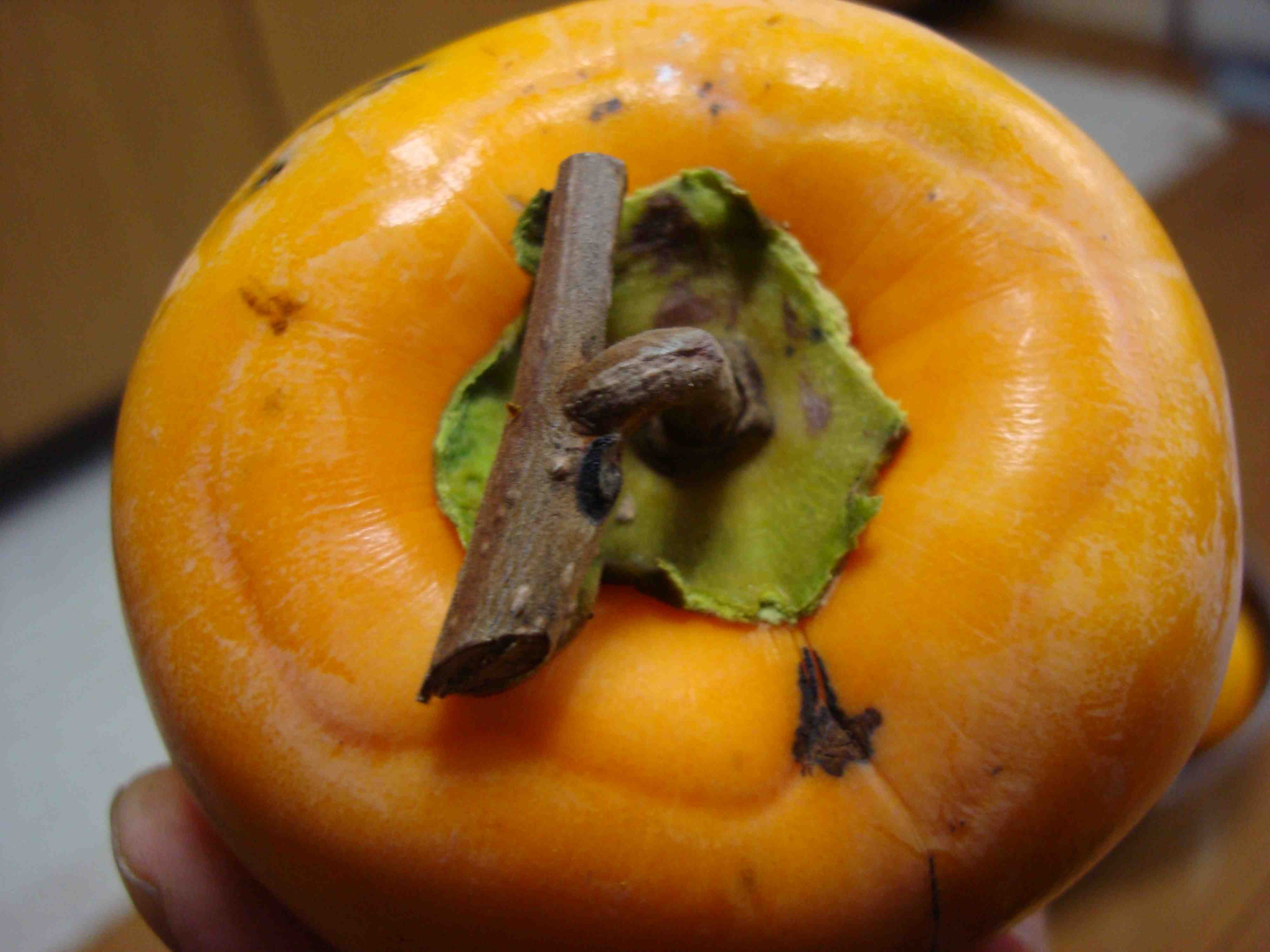 Sour Persimmon