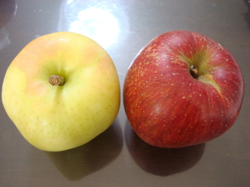 Tokiringo and Aikanokaori Apples