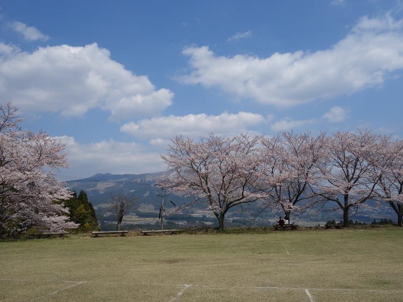 観音桜の駐車場から見た阿蘇山